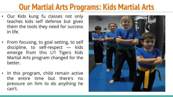 Our Martial Arts Programs: