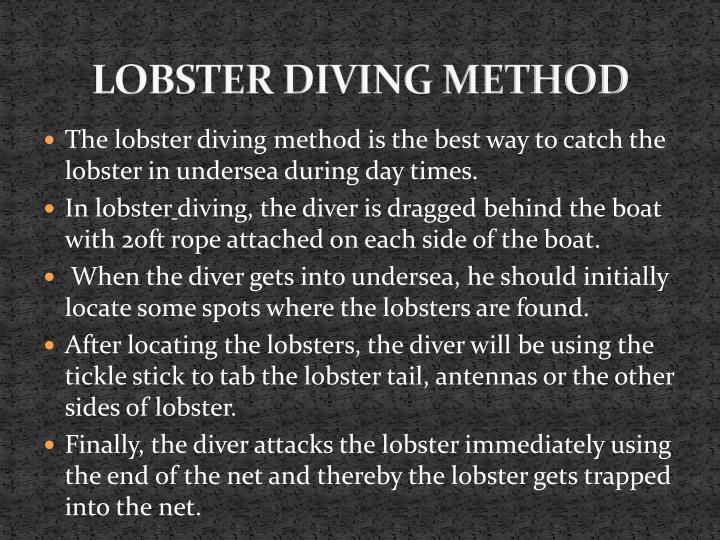 LOBSTER DIVING METHOD