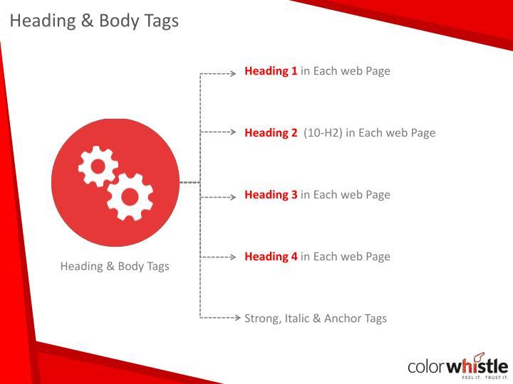 Heading & Body Tags