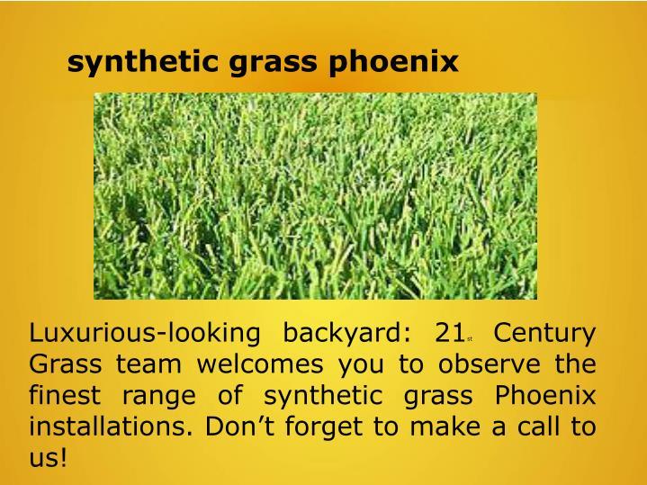 synthetic grass phoenix