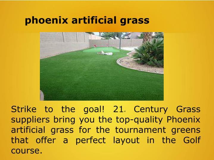 phoenix artificial grass