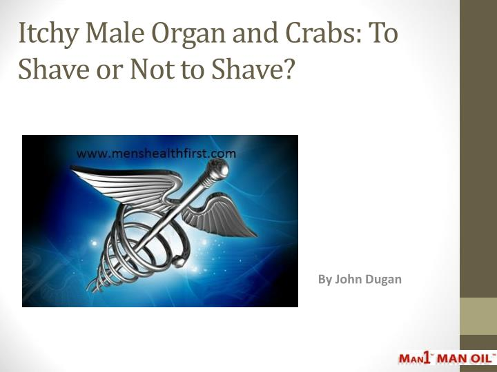 Itchy male organ and crabs to shave or not to shave