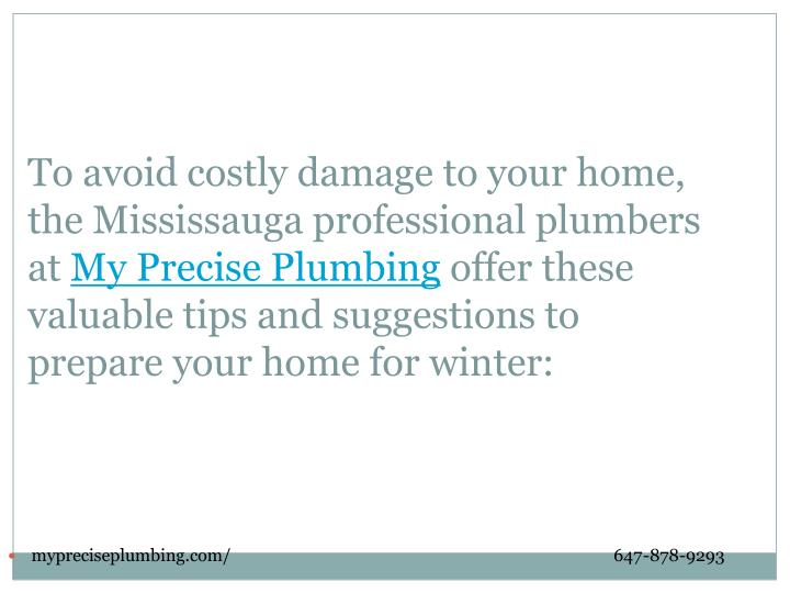 To avoid costly damage to your home, the Mississauga professional plumbers at
