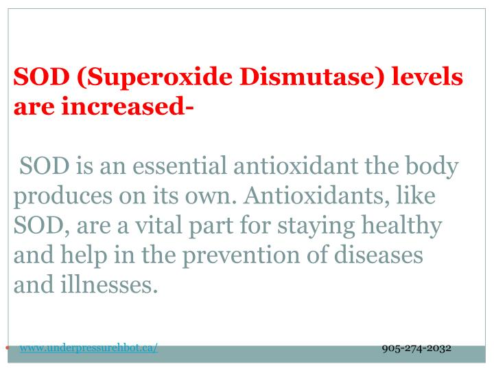 SOD (Superoxide Dismutase) levels are increased-
