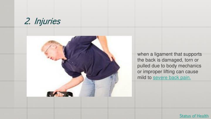 2. Injuries