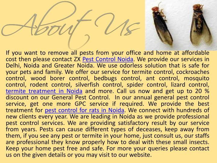 If you want to remove all pests from your office and home at affordable