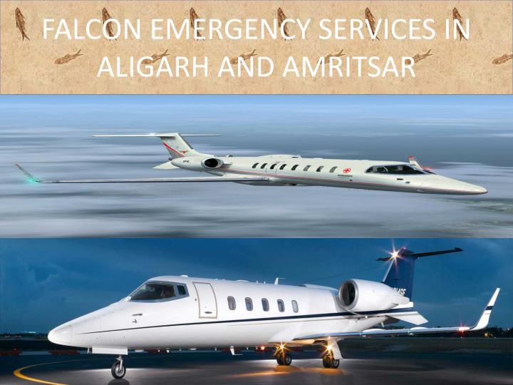 Falcon emergency services in aligarh and amritsar