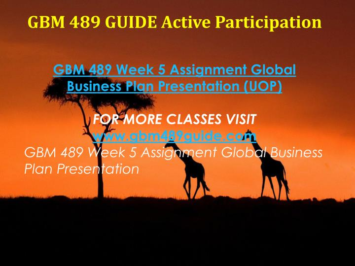 GBM 489 GUIDE Active Participation