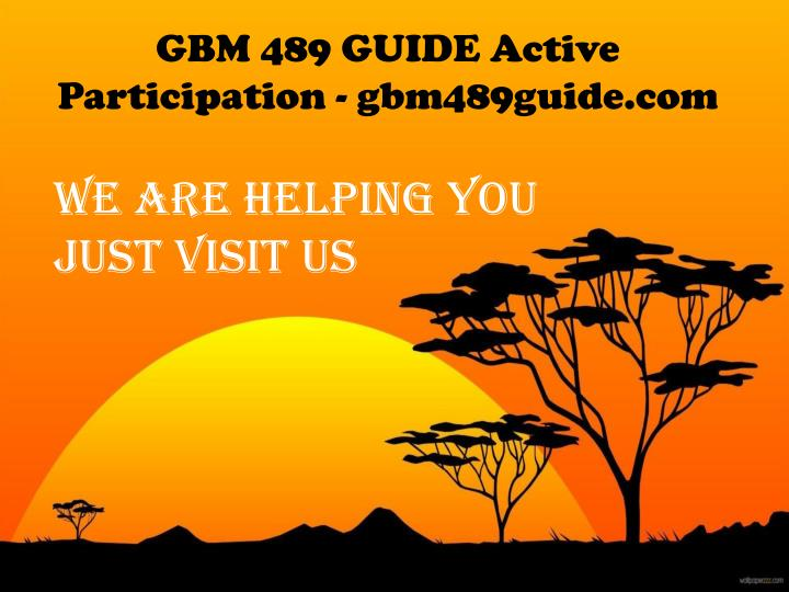 GBM 489 GUIDE Active Participation - gbm489guide.com