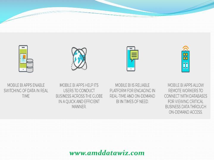 www.amddatawiz.com