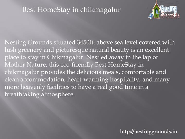 Best HomeStay in chikmagalur