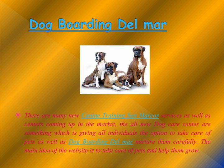 Dog Boarding Del mar