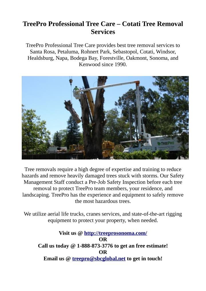 TreePro Professional Tree Care – Cotati Tree Removal