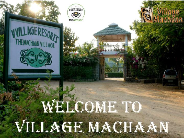 Welcome to village machaan