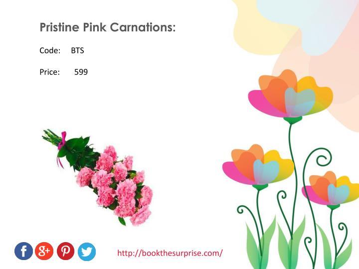 Pristine Pink