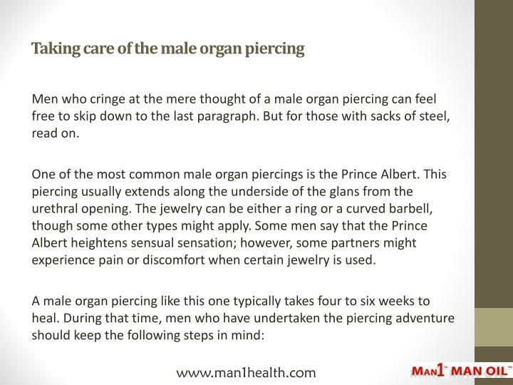 Taking care of the male organ piercing