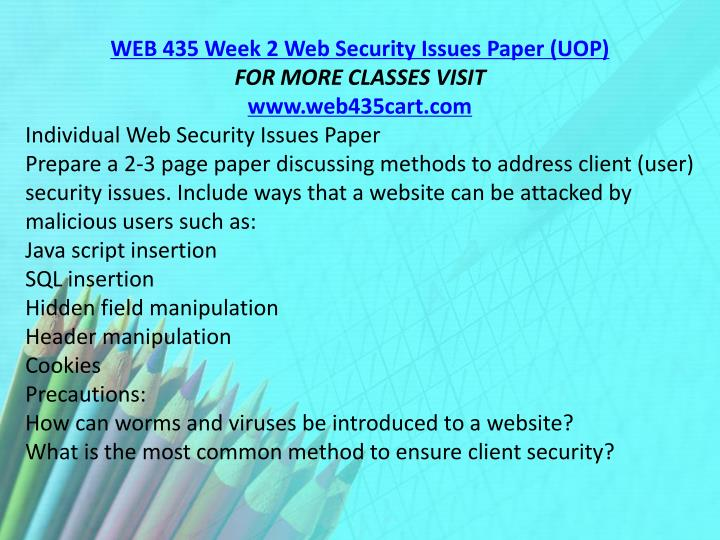 WEB 435 Week 2 Web Security Issues Paper (UOP)