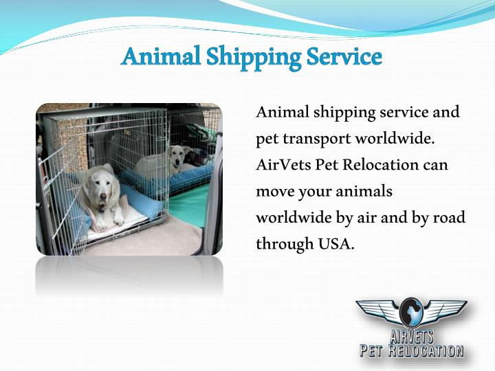 Animal shipping service
