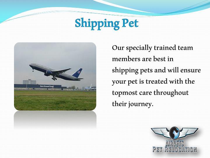 ShippingPet