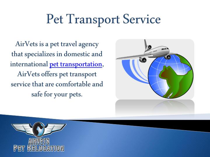 AirVets is a pet travel agency
