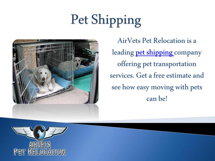 AirVets Pet Relocation is a