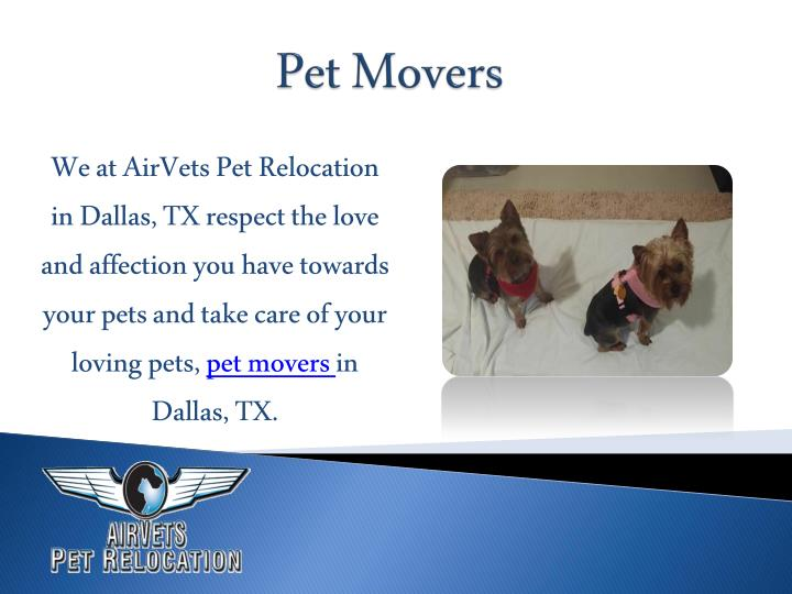 We at AirVets Pet Relocation