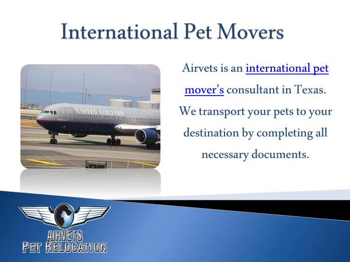Airvets is an international pet