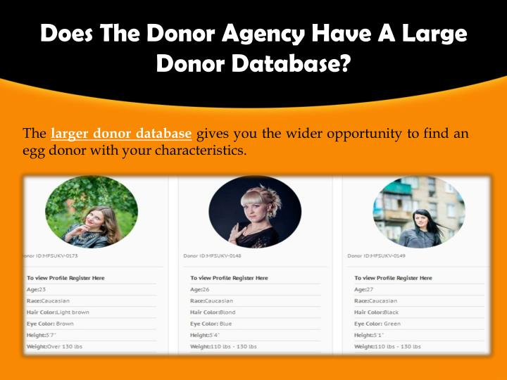 Does The Donor Agency Have A Large Donor Database?