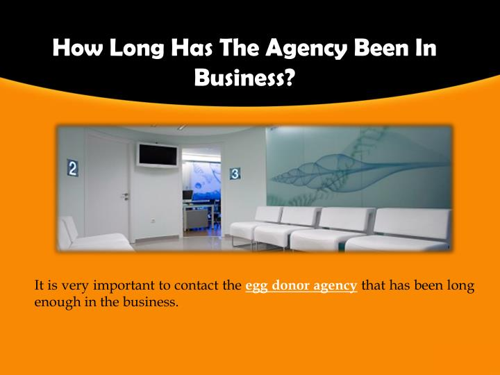 How Long Has The Agency Been In Business?