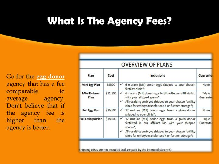 What Is The Agency Fees?
