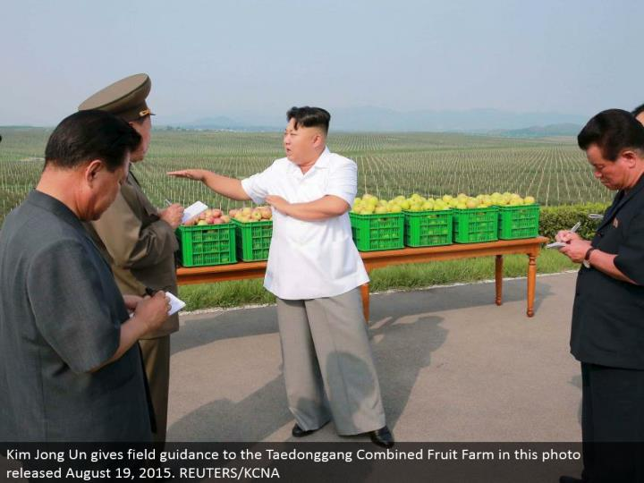 Kim Jong Un gives field direction to the Taedonggang Combined Fruit Farm in this photograph discharged August 19, 2015. REUTERS/KCNA