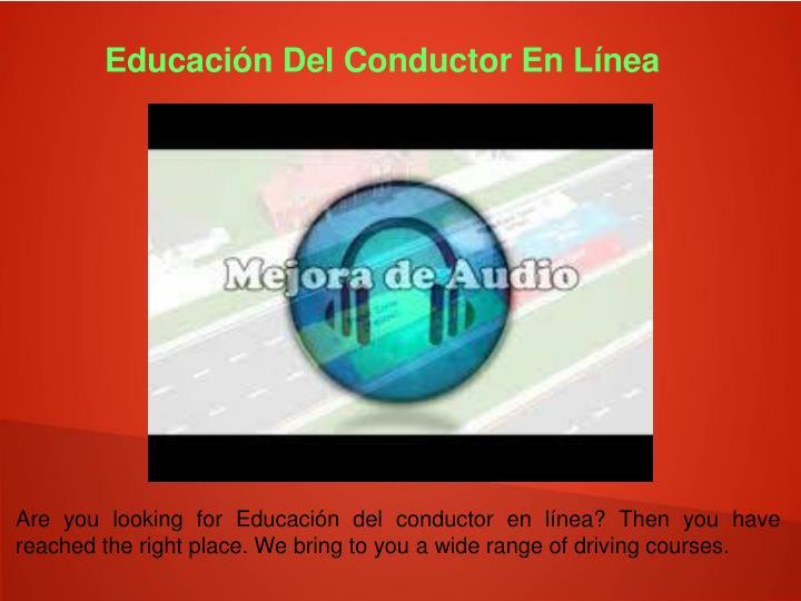 Educación Del Conductor En Línea