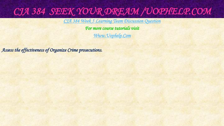 CJA 384  Seek Your Dream /