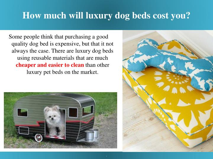 How much will luxury dog beds cost you?