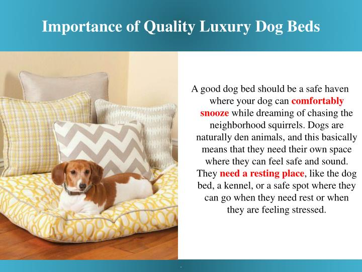 Importance of quality luxury dog beds