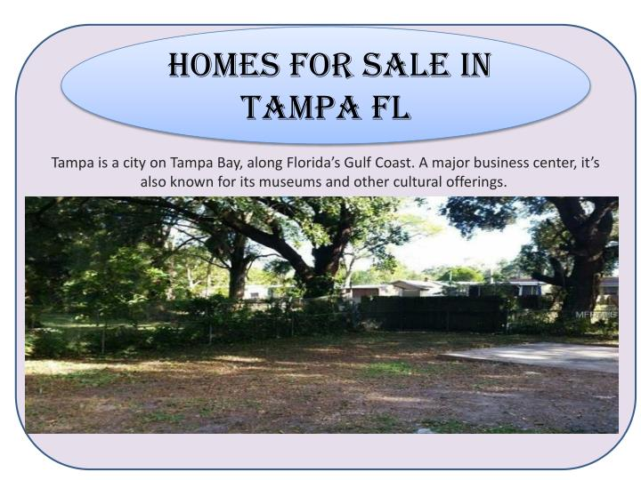 homes for sale in Tampa