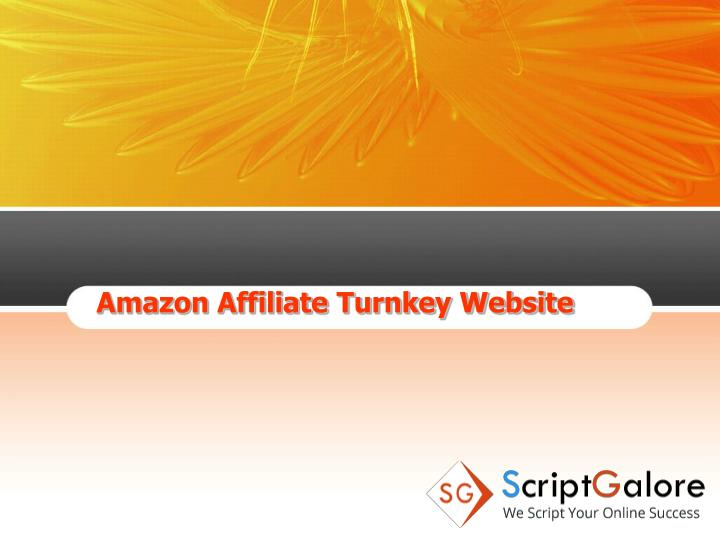 Amazon Affiliate Turnkey Website