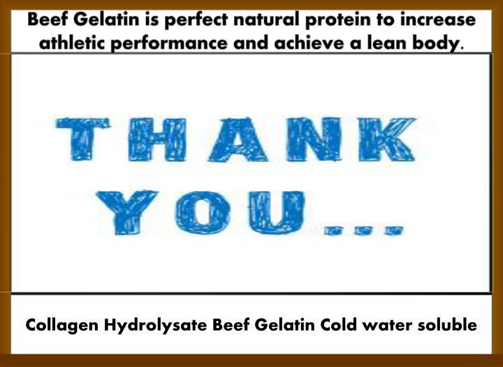 Beef Gelatin is