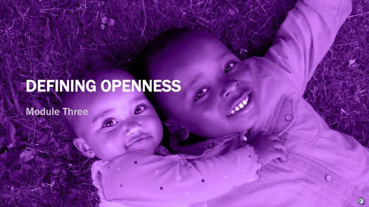 DEFINING OPENNESS