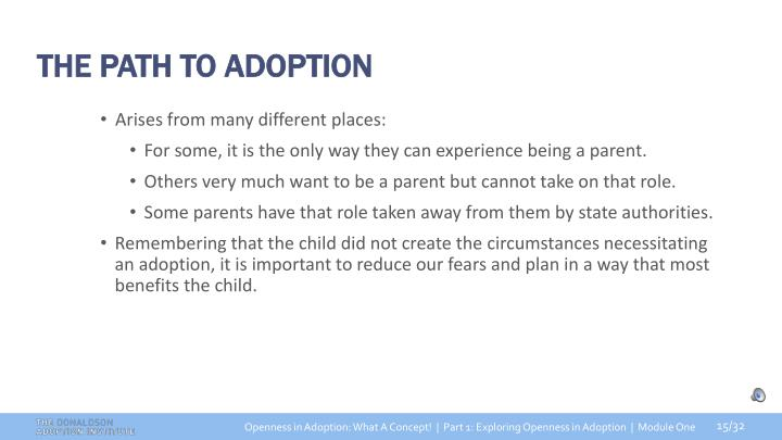 THE PATH TO ADOPTION