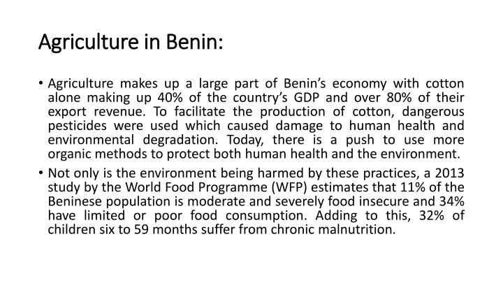 Agriculture in Benin: