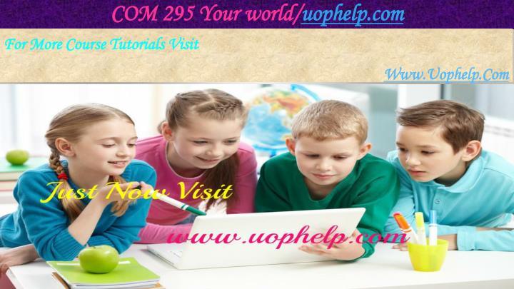 COM 295 Your world/