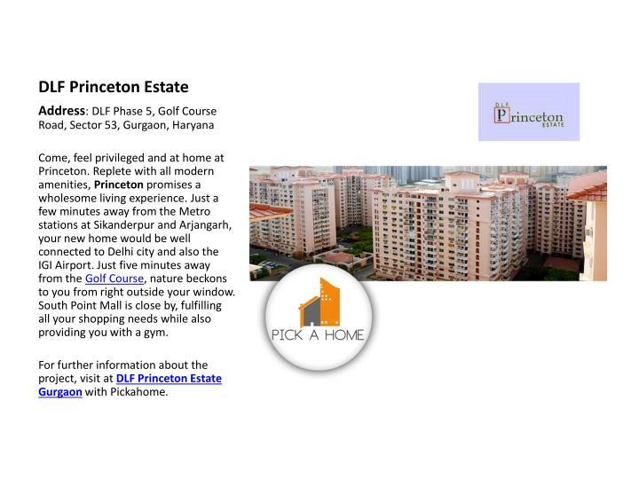 DLF Princeton Estate