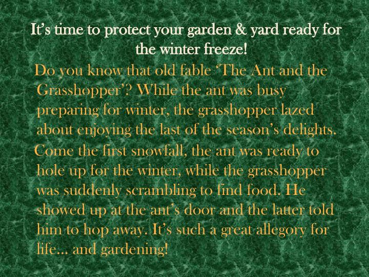 It's time to protect your garden & yard ready for the winter freeze!