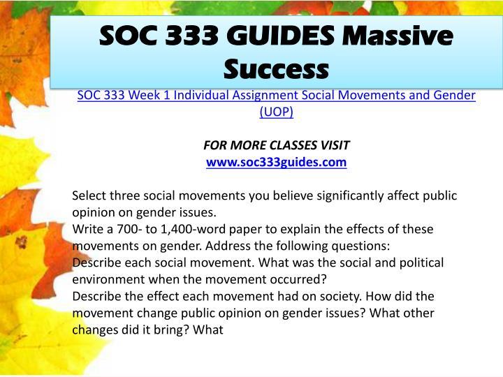 SOC 333 GUIDES Massive Success