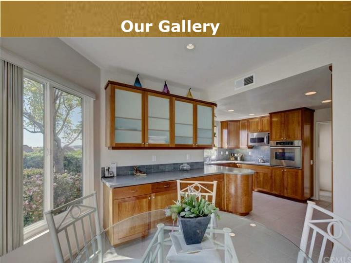Our Gallery