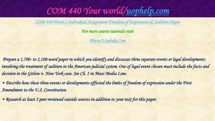 COM 440 Your world/