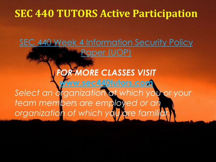 SEC 440 TUTORS Active Participation