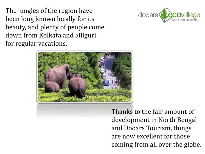The jungles of the region have been long known locally for its beauty, and plenty of people come down from Kolkata and