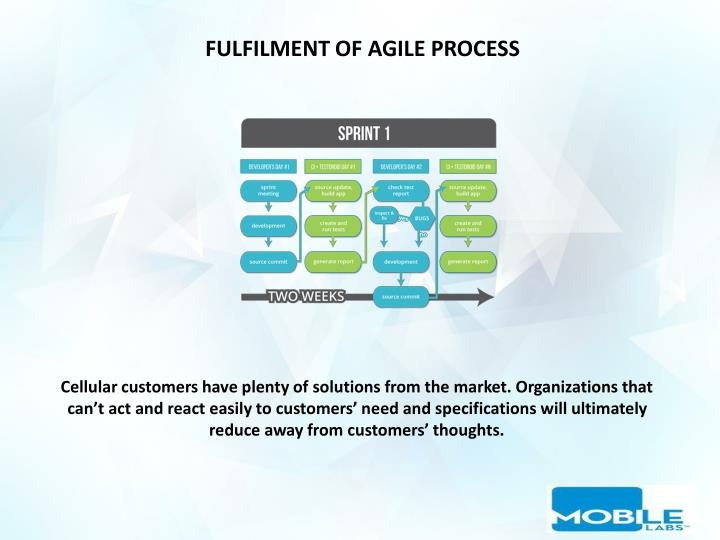 FULFILMENT OF AGILE PROCESS